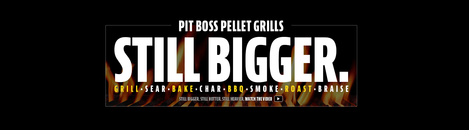 Pit Boss Grills Wood Pellet Grills Ceramic Charcoal