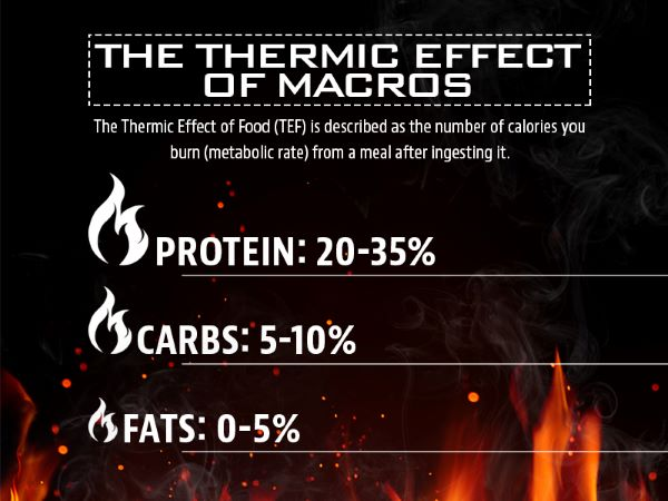 Thermic Effect image