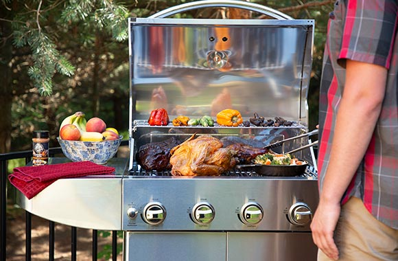 Pit Boss Wood Gas Grill